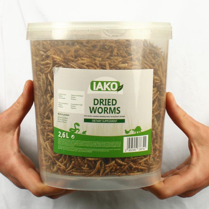 vers de farine séchés caractéristiques