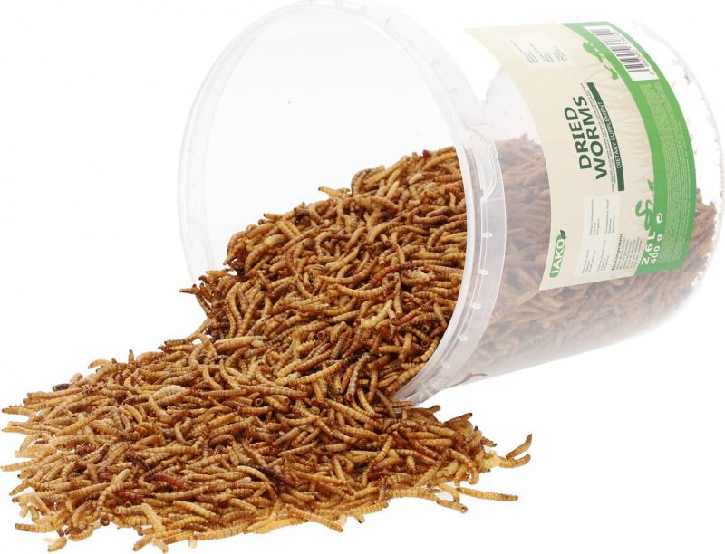 Iako Meelwormen, natuurlijke snacks voor kippen/vogels/knaagdieren - 400g of 5kg