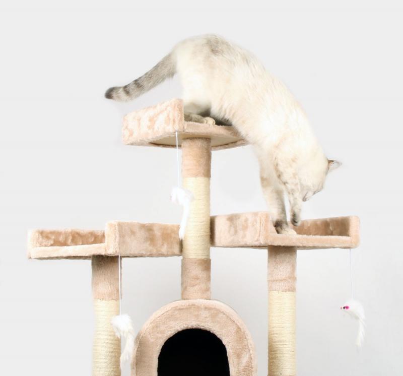 Arbol para gatos Zolia Havana - 118cm