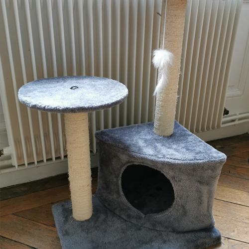 avis celine arbre chat laydie zolia