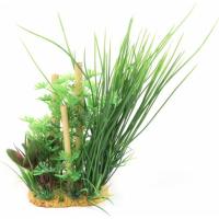 Bosquet multi-plantes pour aquarium