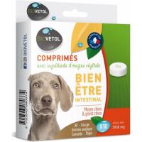 Biovetol Comprimés Bien-être intestinal pour chien