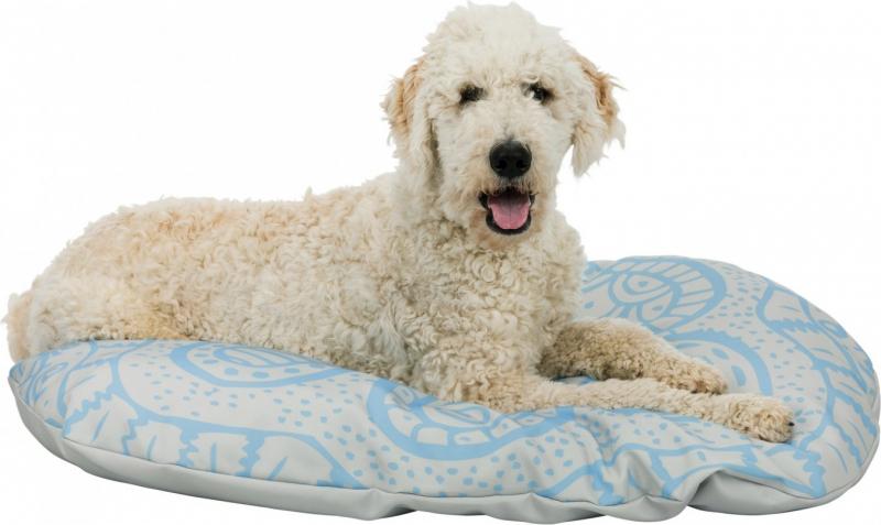 Coussin Bilko pour chien