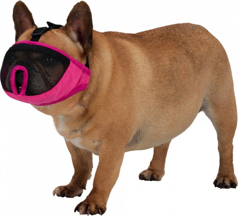 Muselière gris ou rose pour chiens de races à museau court