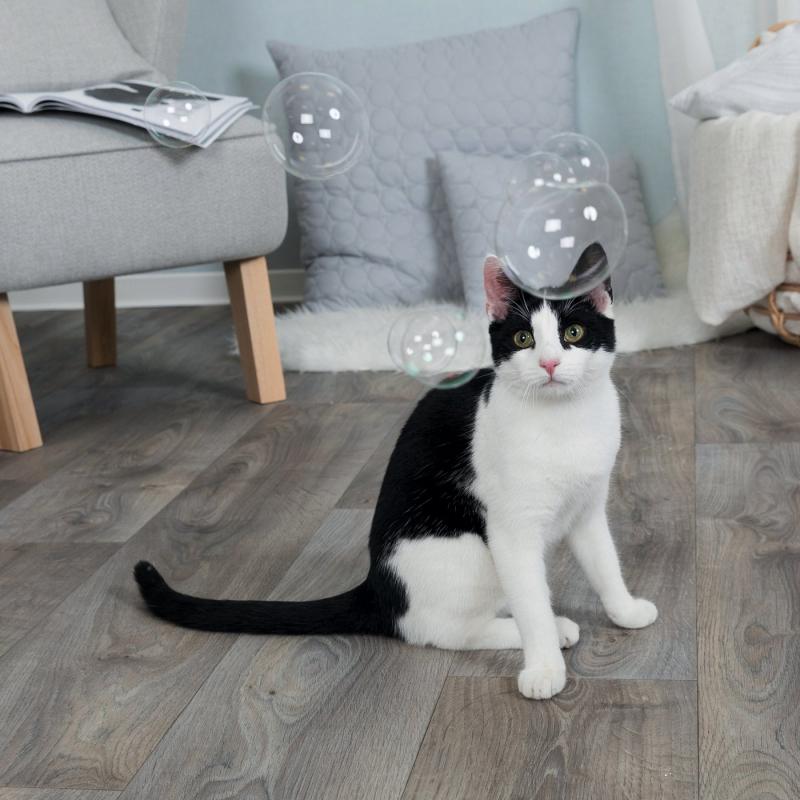 Bulles de Catnip pour jouer intensément avec votre chat