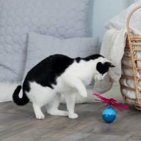Pop-up Ball jouet électronique pour chat