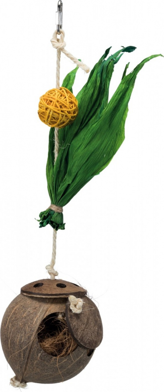 Noix de coco sur corde en sisal
