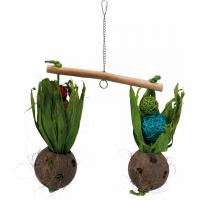 Balançoire avec noix de coco