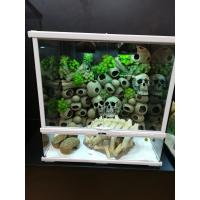 Cráneo de resina decoración para terrario