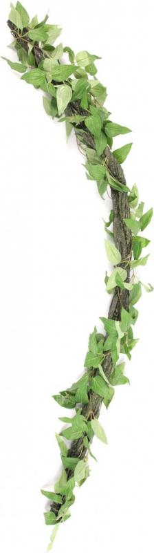 Liane avec feuilles 61 cm pour terrarium