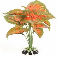 Pianta con fogliame verde / arancione per terrario