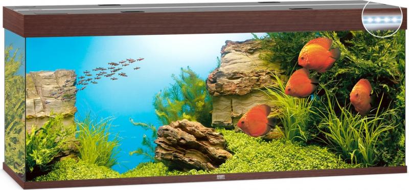 Aquarium JUWEL Rio 450 LED