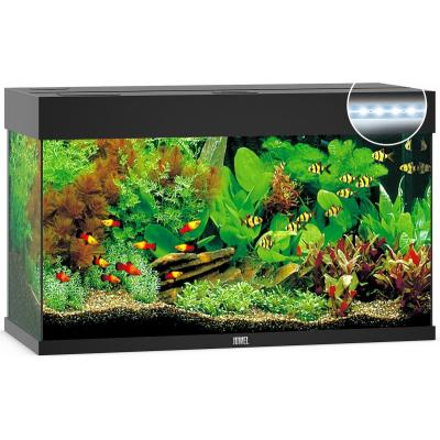 Acheter Un Aquarium aquarium et meuble pour aquarium