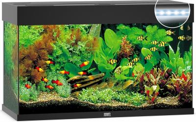 Aquarium JUWEL Rio 125 LED