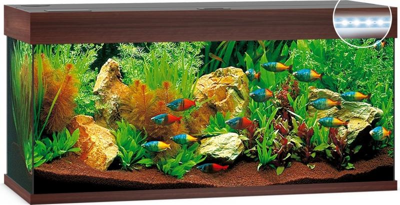 Aquarium JUWEL Rio 180 LED