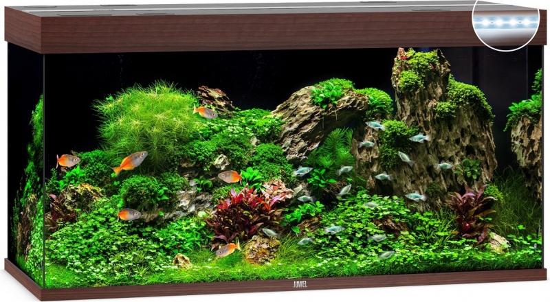 Aquarium JUWEL Rio 350 LED