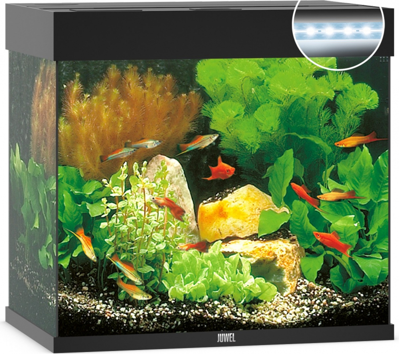 Aquarium JUWEL Lido 120 LED