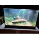 45639_Aquarium-Juwel-Primo-70-LED_de_Colette_18921732165c3d7e17a61110.36180493