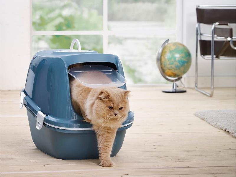 Maison de toilette pour chat Reina avec tamis