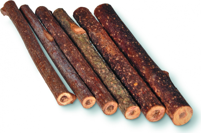 Batons à ronger bois de kiwi