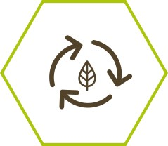 Compostable et biodégradable
