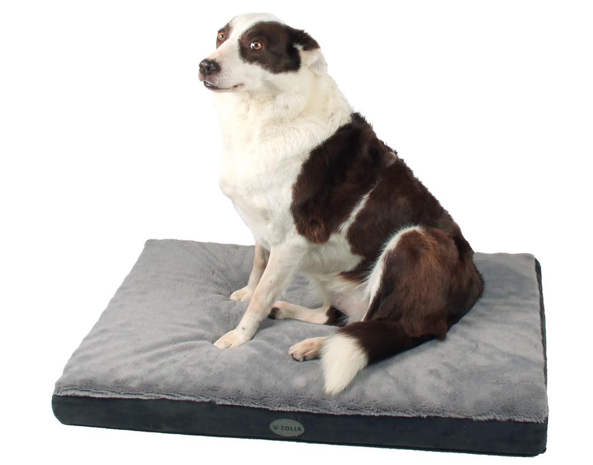 un matelas à mémoire de forme pour les vieux os de votre chien