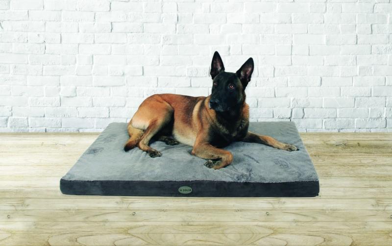 Matelas mémoire de forme pour chien Zolia Nixon - 3 tailles disponibles