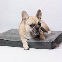 Materasso ortopedico per cani Zolia Nixon - 3 taglie disponibili