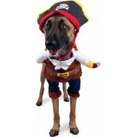 Déguisement pirate Zolia Festive pour chien