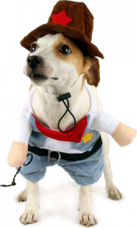Déguisement shérif Zolia Festive pour chien et chat