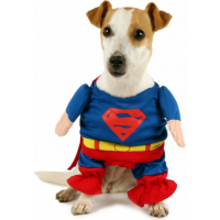 Déguisement pour chien Zolia Festive