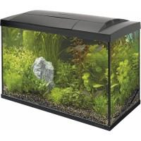 Superfish START Kit 70 Tropical Kit Noir ou Blanc