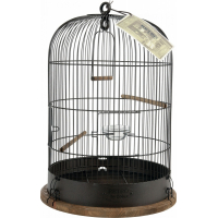 Cage oiseau Rétro Lisette