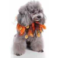 Collier Halloween Zolia Festive pour chien