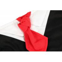 Collier cravate Classy Dog Zolia Festive pour chien