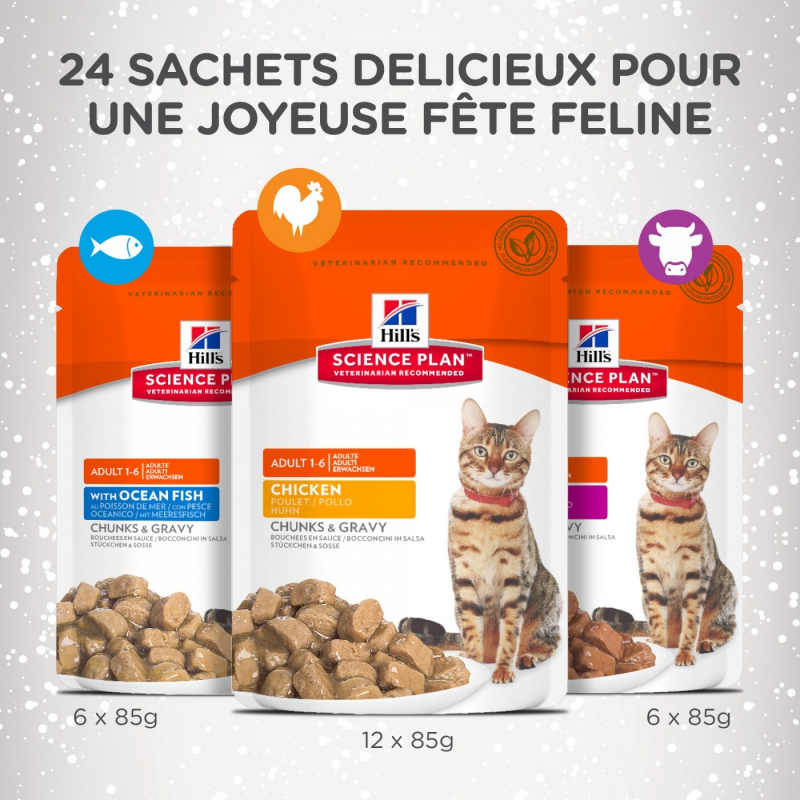 Calendrier De L Avent Hill S Science Plan Pour Chat