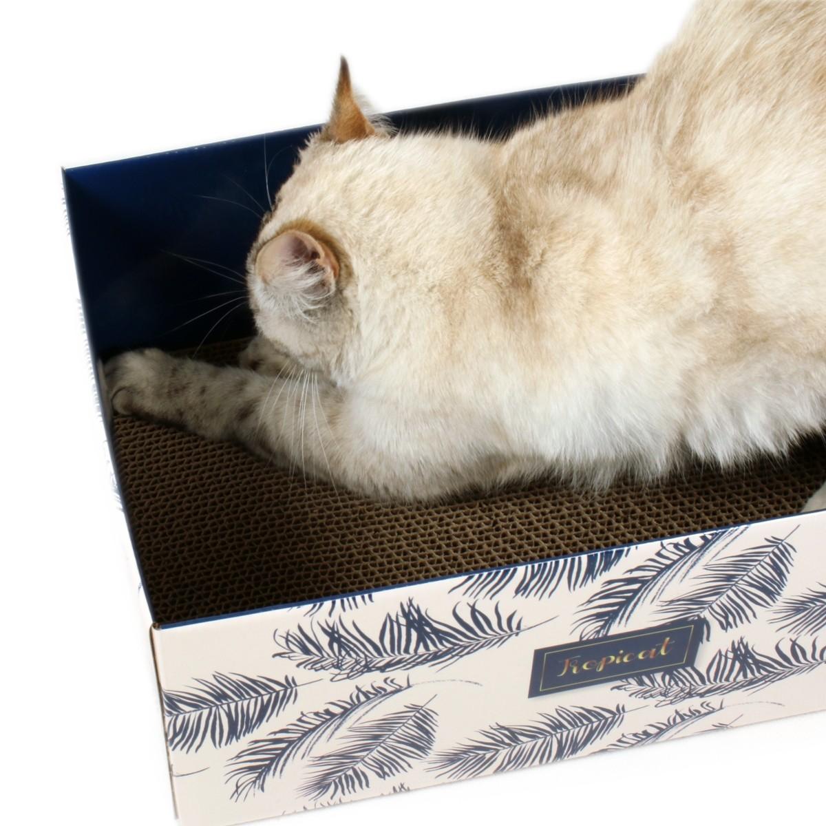 Boite en carton avec griffoir pour chat Tropicat