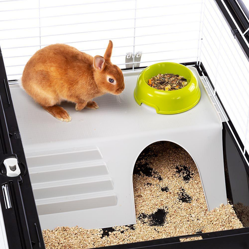 Kooi voor konijnen en cavia's Ferplast Casita 100