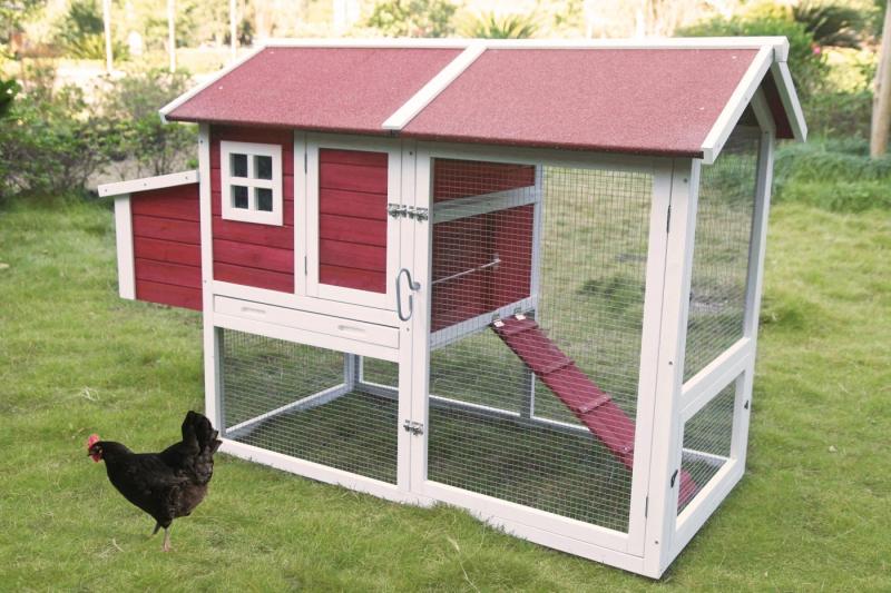 Poulailler 3 poules avec enclos Zolia Elvis - 141 cm