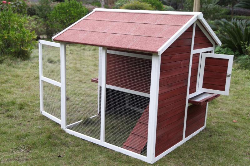 Pollaio 4 galline con recinto Zolia Wizzi - 147 cm