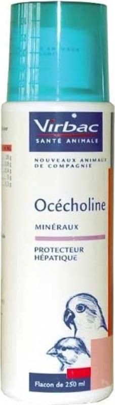 Virbac Ocecholine - Limita a infiltração de gordura no fígado