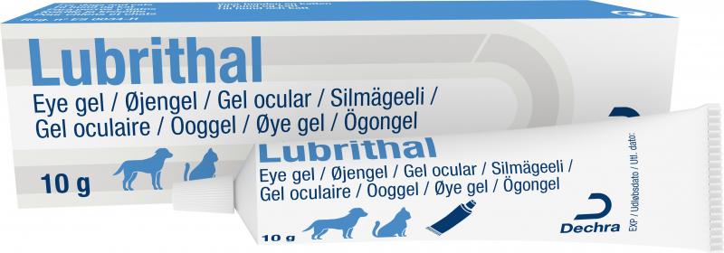 Dechra Lubrithal Gel oculaire pour chien et chat