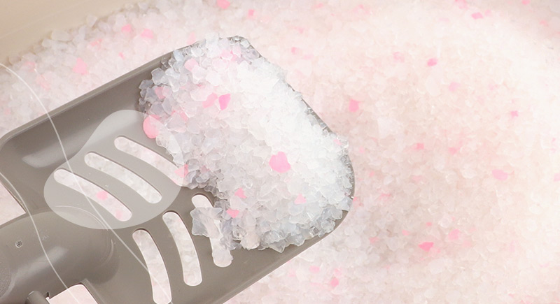 silica pearl baby powder parfum