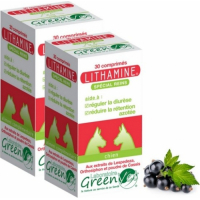 GREEN VET Lithamine Dog & Cat für Nierenkomfort