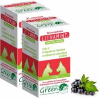 GREEN VET Lithamine Cane & Gatto per il Conforto Renale