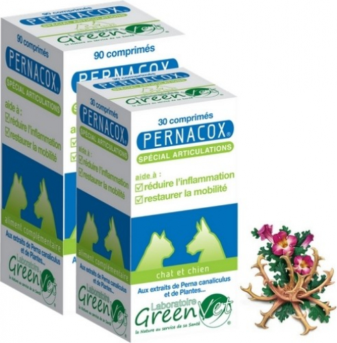 GREEN VET Pernacox Chien & Chat pour le Confort Articulaire