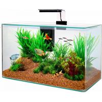 Bac nano-aquarium