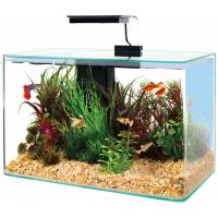 Aquarium Clear noir avec angles arrondis
