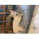 50361_Cuscino-ovattato-sfoderabile-One-transat---diverse-taglie_de_Giulia_676617046054e58396fca0.28134351