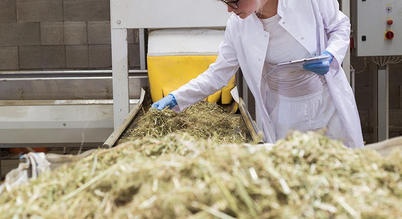 quality clean litiere chanvre écologique